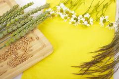 Crop on a table. Royalty Free Stock Images