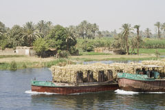 Crop transport. Crop boats on the Nile River royalty free stock image