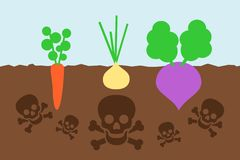 Crop of vegetable is contaminated by poisonous chemicals. Dangerous cultivation on the polluted field - crop of vegetable is contaminated by poisonous chemicals royalty free illustration