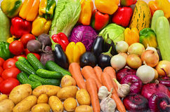 Crop of vegetables. Potatoes, tomatoes, peppers, eggplant and other vegetables Stock Photography