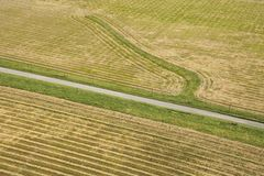Cropland aerial. Aerial of rows in agricultural cropland stock images