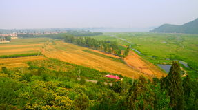 Cropland at Huairou reservoir Royalty Free Stock Image