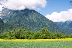 Cropland in mountain Stock Images
