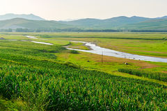 The cropland and river. The photo was taken in 203 provincial road Hinggan League, Inner Mongolia Autonomous,China stock image