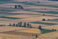 Croplands i Grekland Royaltyfria Foton