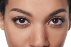 Cropped closeup image of female brown eyes Royalty Free Stock Images