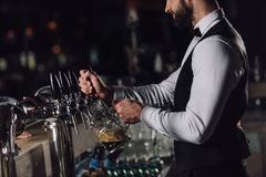 cropped image of bartender pouring beer from beer taps royalty free stock photo