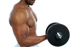 Cropped image of a bodybuilder exercising Stock Photo