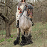 Cropped image of brave woman in armor on a horse stock images