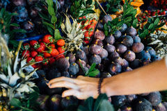 Cropped image of a customer choosing juicy fresh ripe fruit naprilavke. at a street fruit market. Stock Photos