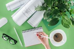 Cropped image of female architect writing in empty textbook at table with coffee bluerints. And plant stock photos