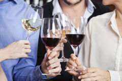Cropped Image Of Friends Toasting Wine Glasses stock images