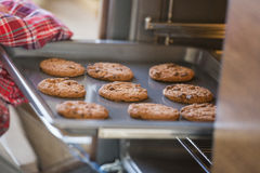 Cropped image of hand removing cookie tray from oven in kitchen Stock Photo