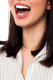 Cropped image of a joyous woman Stock Photography