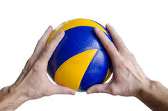 Cropped image of a man hand holding a volleyball ball. Against a white background royalty free stock photography