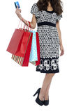 Cropped image of a shopaholic woman Stock Photos