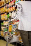 Cropped image of woman pushing trolley Royalty Free Stock Image