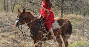 Cropped image of woman in red shawl and dress at arabian horse Stock Photography