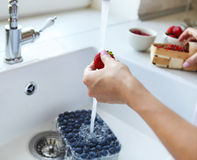 Cropped image of woman washing blueberry, strawberry and red cur Stock Photos