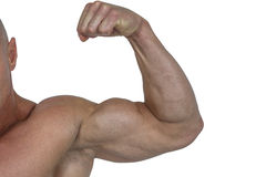 Cropped muscular man flexing bicep Royalty Free Stock Photos