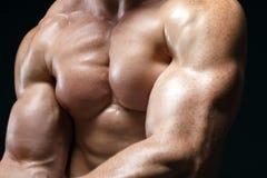 Cropped obrazek mięśnia mężczyzna Obrazy Royalty Free