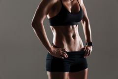 Cropped photo of amazing young sports woman body Royalty Free Stock Images