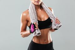 Cropped photo of amazing young sports woman Royalty Free Stock Photo