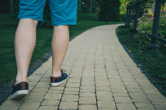 Cropped photo of young man walking in the park Royalty Free Stock Image