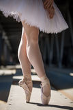 Cropped picture legs of graceful ballerina in Royalty Free Stock Photo