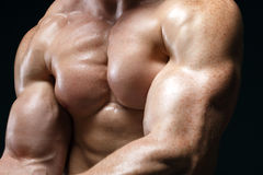 Cropped picture of muscle man. Posing in studio over dark background royalty free stock images