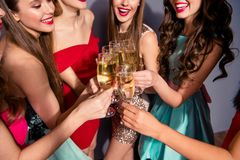 Cropped portrait of nice lovely gorgeous company cheerful cheery ladies festive clinking wineglasses congrats shadow stock photos