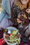Weekend with friends. Cropped shot of couple sitting on plaid with wine and picnic basket stock image