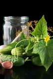 Cropped shot of cucumbers in jar preparate for canning isolated on black Royalty Free Stock Photography