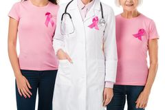 Cropped shot of doctor and women with breast cancer awareness ribbons. Isolated on white royalty free stock photography