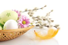 Cropped shot easter eggs in basket with flowers and catkins Royalty Free Stock Photography