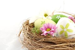 Cropped shot of easter eggs in the nest with flowers isolated Stock Photos