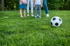 Cropped shot of family standing together and soccer ball on grass. In park royalty free stock images