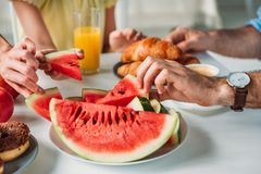 cropped shot of family taking watermelon slices royalty free stock image