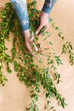 Cropped shot of florist with tattooed hands arranging green plants. At workplace royalty free stock photo