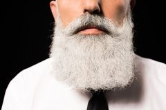 Beard. Cropped shot of a man in a white shirt with long grey-haired beard Royalty Free Stock Image