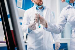 Cropped shot of scientists in white coats with tube. In lab royalty free stock photography