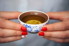 Woman holding traditional chinense teacup with oolong green tea. Cropped shot of woman holding traditional chinense teacup with oolong green tea royalty free stock photography