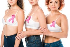 Cropped shot of women in bras with breast cancer awareness ribbons standing. Isolated on white stock photography
