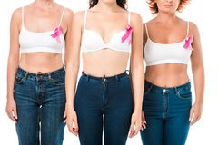 Cropped shot of women in bras with breast cancer awareness ribbons standing together. Isolated on white stock images