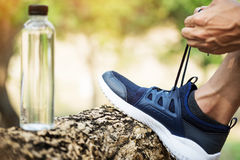 Cropped shot of young man runner tightening running shoe laces,. Getting ready for jogging exercise outdoors. Male jogger lacing his sneakers standing on forest Stock Photos
