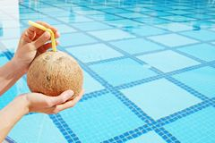Cropped shot of young woman holding in hands whole coconut cocktail with straw in the hole over outdoor swimming pool with square royalty free stock images