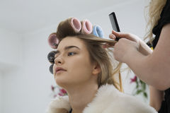 Cropped Stylist Fixing Rollers In Model's Hair  Royalty Free Stock Images