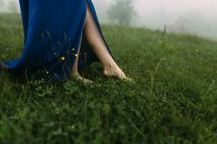 Beautiful slender legs stand on the grass in the morning royalty free stock photography