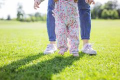Cropped view of mother supporting baby daughter and helping her make first steps stock image