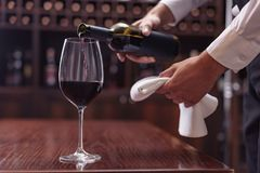 Sommelier pouring red wine. Cropped view sommelier pouring red wine from bottle into glass at table in cellar stock photo
